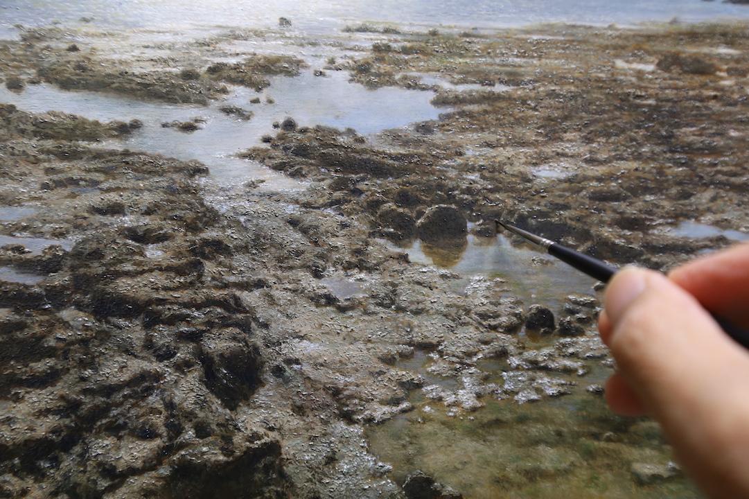 白保海岸 サンゴ